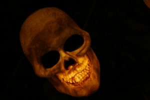 skull-570975_1920